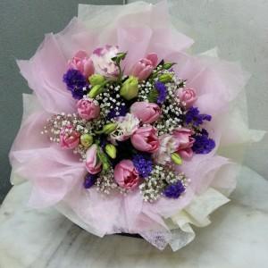 Pink tulip HB